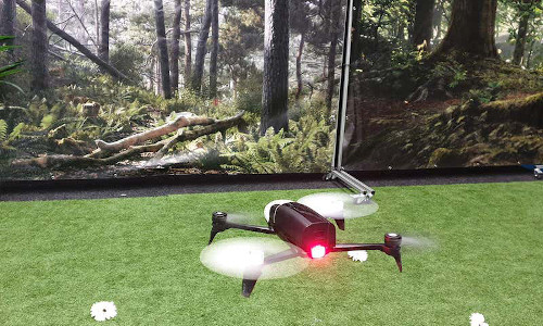 This small drone is learning to fly and land like a honeybee.